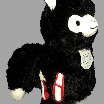 11-noirzombie-pacaside