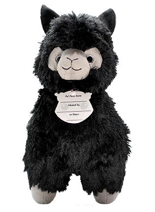 Black Quartz Paca Plush